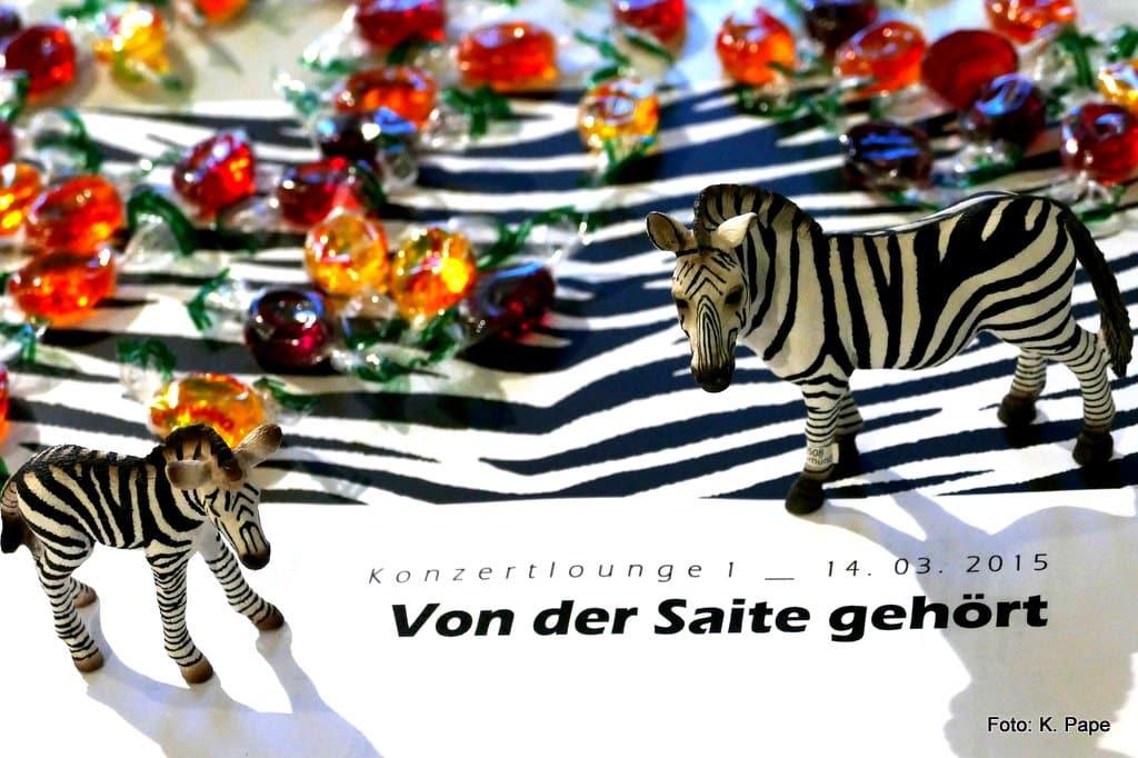 Zebras; Bonbons, Notenmappen; Musikinstitut MusioCeum; Streichkonzert; Ensemble JBB