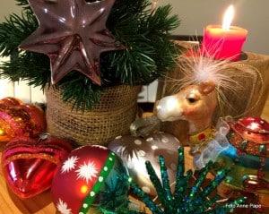 Weihnachtsgrüße aus dem MusiCeum